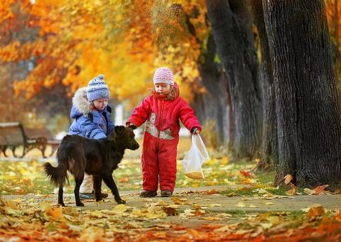 http://www.proshkolu.ru/content/media/pic/std/5000000/4180000/4179385-95d5c05c852b83e9.jpg