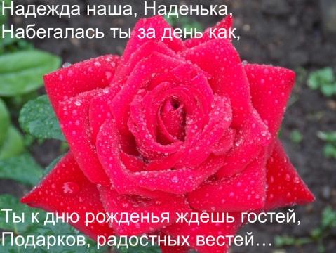 4341015-bcc79a04b1f0adbb.jpg