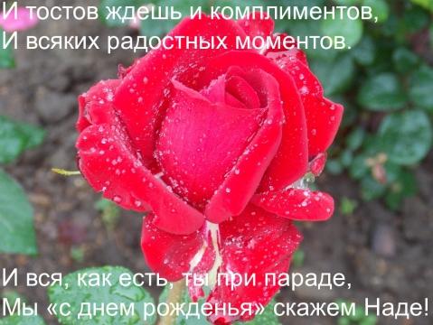 4341019-640cafc00f97889c.jpg