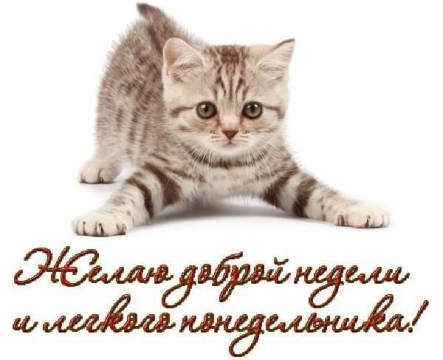 http://www.proshkolu.ru/content/media/pic/std/5000000/4471000/4470546-a5da2b46f7526aff.jpg