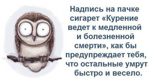 http://www.proshkolu.ru/content/media/pic/std/5000000/4781000/4780266-63ef02995fac965b.jpg