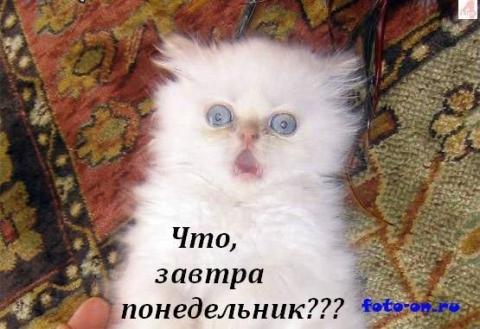 http://www.proshkolu.ru/content/media/pic/std/6000000/5074000/5073046-e4d48cefe99b12f5.jpg