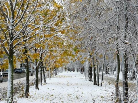 http://www.proshkolu.ru/content/media/pic/std/6000000/5204000/5203759-e518769ef23a596b.jpg
