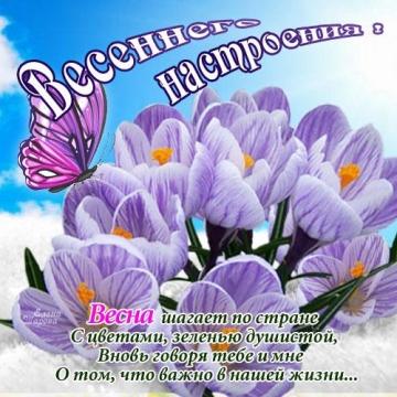 http://www.proshkolu.ru/content/media/pic/std/6000000/5220000/5219210-84432d8d5c038897.jpg