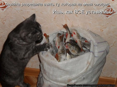 http://data12.proshkolu.ru/content/media/pic/std/6000000/5246000/5245317-1f3bdc40c96e4fcb.jpg