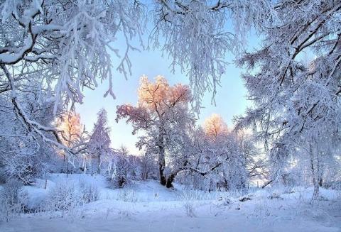 http://www.proshkolu.ru/content/media/pic/std/6000000/5255000/5254401-51e4f8e427cf61a5.jpg
