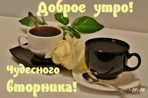 http://www.proshkolu.ru/user/trayanova/file/5304894/content/media/pic/std/6000000/5305000/5304894-4867e36dc48d4d5c.jpg