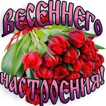 http://www.proshkolu.ru/content/media/pic/std/6000000/5476000/5475101-059c036fa26e51af.jpg