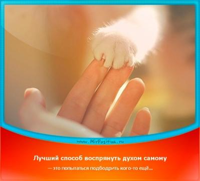 http://www.proshkolu.ru/content/media/pic/std/6000000/5539000/5538621-f938a0d8ee85f6c1.jpg