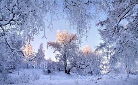http://www.proshkolu.ru/content/media/pic/std/7000000/6023000/6022860-d1b84569e412d52f.jpg
